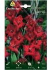 Гладиолус Вельвет Джой (Gladiolus primulinus Velvet Joy)