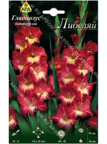 Гладиолус Либеляй (Gladiolus Liebelei)