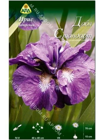 Ирис сибирский Дабл Стандарт (Iris sibirica Double Standard)