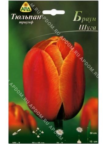 Тюльпан Браун Шуга (Tulipa Brown Sugar)