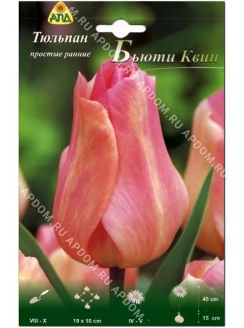 Тюльпан Бьюти Квин (Tulipa Beauty Queen)