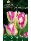 Тюльпан Дель Пьеро (Tulipa Del Piero)