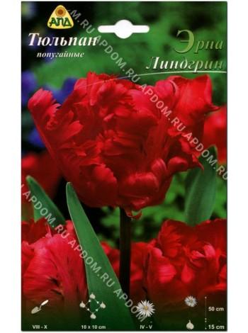 Тюльпан Эрна Линдгрин (Tulipa Erna Lindgreen)