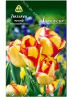 Тюльпан Аутбрейк (Tulipa Outbreak)