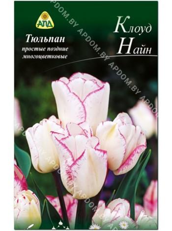 Тюльпан Клоуд Найн (Tulipa Cloud Nine)