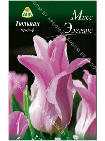 Тюльпан Мисс Элеганс (Tulipa Miss Elegance)