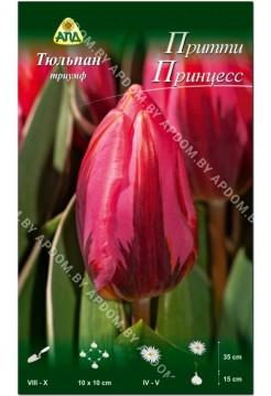 Тюльпан Притти Принцесс