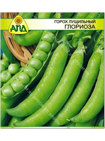 Горох лущильный Глориоза (Pisum sativum L.)