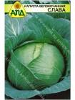 Капуста б/к Слава (Brassica oleracea var.capitata alba)