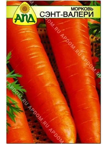 Морковь Сэнт-Валери (Daucus carota L.)