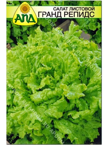 Салат листовой Гранд Репидс (Lactuca sativa L.var.capitata)
