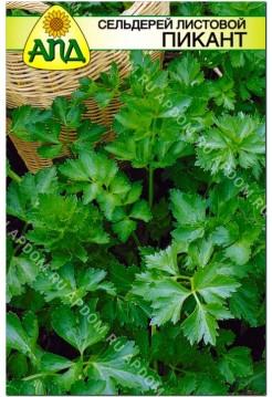 Сельдерей листовой Пикант