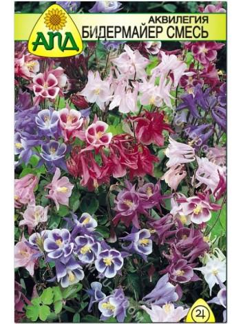 Аквилегия Бидермайер карликовая смесь (Aquilegia cultorum)