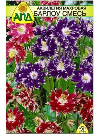 Аквилегия махровая Барлоу смесь (Aquilegia vulgaris)