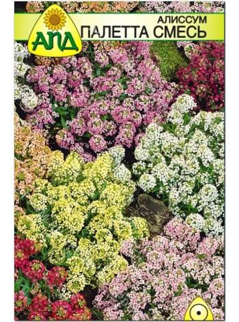 Алиссум Палетта смесь (Alyssum maritimum)
