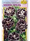 Гвоздика китайская Менестрель  (Dianthus chinensis v. heddewigii)