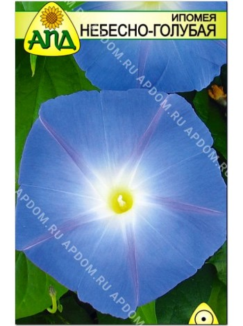 Ипомея Небесно-голубая (Ipomoea tricolor)