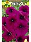 Петуния ампельная Леди в Пурпурном F1 (Petunia x hybrida)