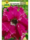Петуния Вечерняя Звезда (Petunia x hybrida)