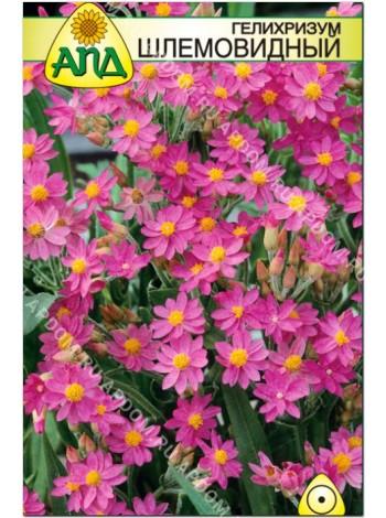 Гелихризум шлемовидный (Helichrysum cassianum)